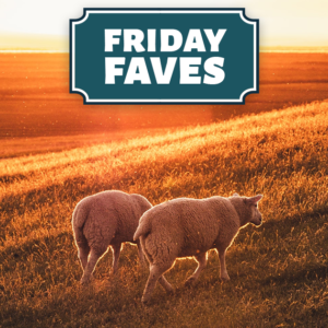 friday faves your weekly strong towns roundup