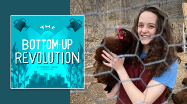 the bottom up revolution is building family and community resilience